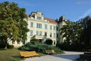 Gymnázium a sociální péče Šalounova